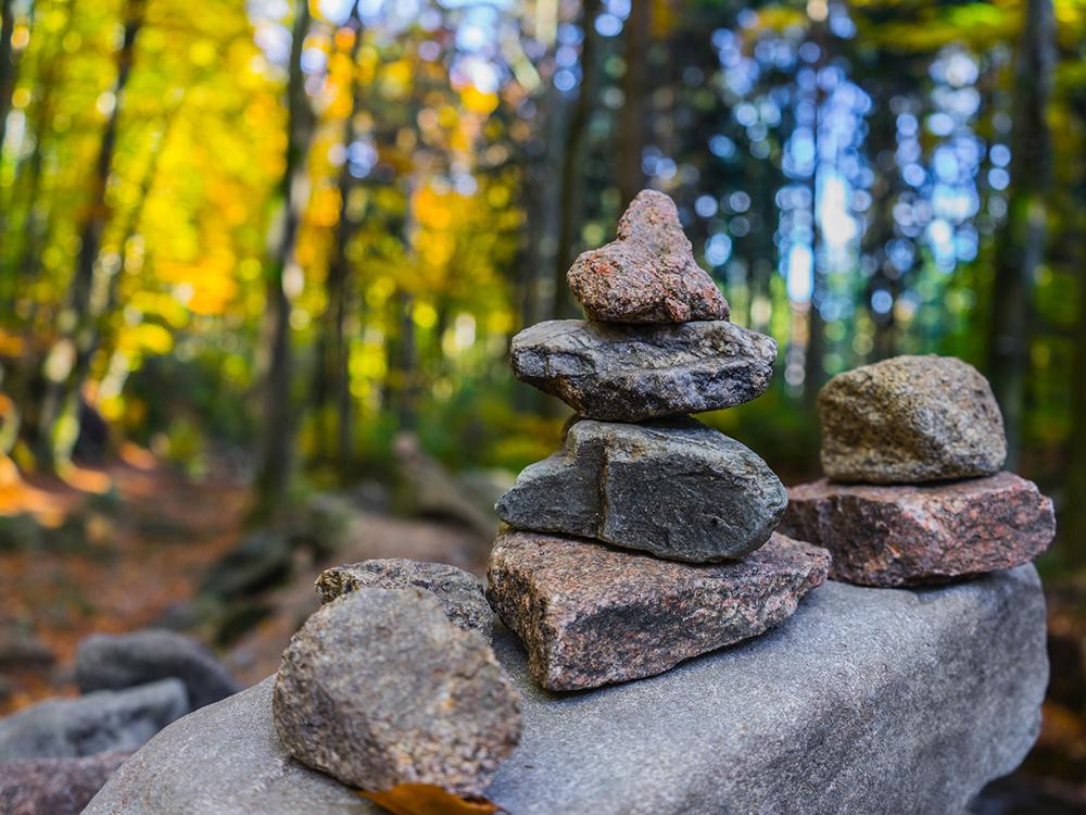 Grauer Steinhaufen In Der Nähe Von Bäumen